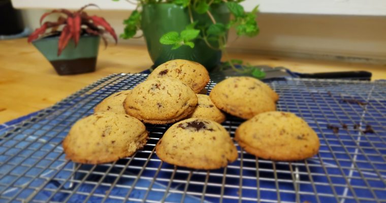 Cakey Gluten-free Chocolate Chip Cookies